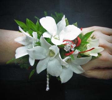 Y: Dramatic Orchids Wrist Corsage