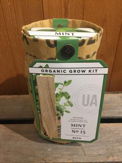Organic Grow Kit - Mint
