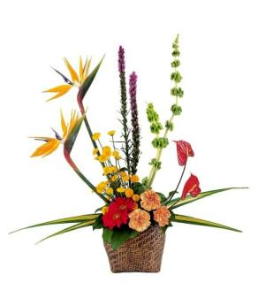 Serene Tropical Basket