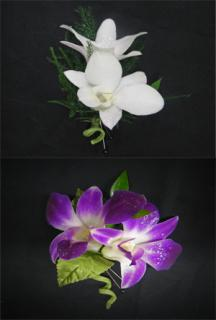 Z: Double Orchid Boutonniere