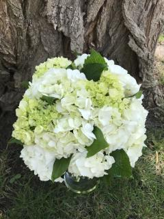 White Hydrangea Bridal Bouquet