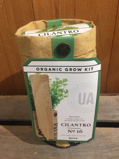 Organic Grow Kit - Cilantro