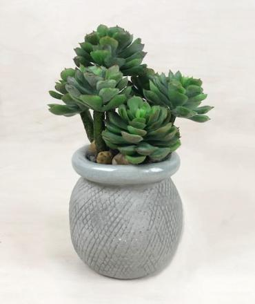 Stylish Faux Succulent