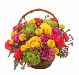 Colorfulness Basket